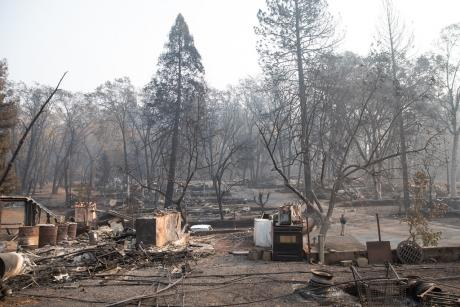 Image of a burned community in Paradise, CA
