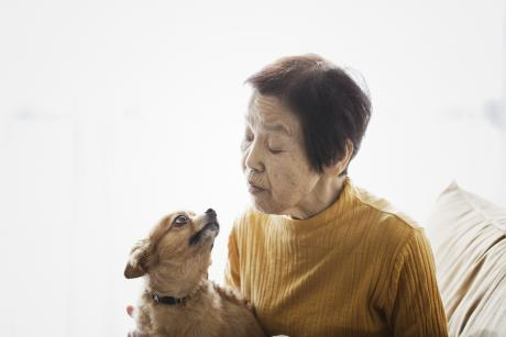 Older Asian woman look fondly at her little dog, who's looking up at her with the cutest expression. You can tell they love each other.